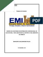 MODELO DE PERFIL 2019.docx