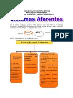 contenido up 6BIOCIENCIAS.doc