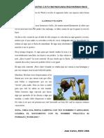 Práctica 01 de Formato Word - Wrw 2019
