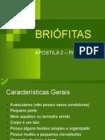 Biologia PPT - Briofitas