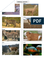 album animales nativos exoticos 2.docx
