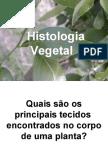 Biologia PPT - Histologia Vegetal