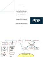 332529466-Metodolo-ILCI.docx
