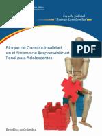 BLOQUE_DE_CONSTITUCIONALIDAD_EN_EL_SRPA.pdf