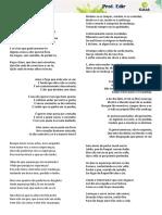 MODULAR SONETOS DE CAMÕES.docx