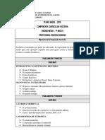 Plano de curso 1 ANO.docx