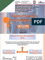 SNS y SNP.pptx