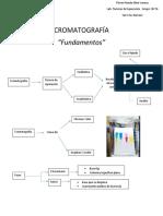 Cromatografía.docx