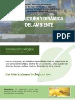 Estructura y dinamica del ambiente
