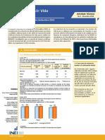 Informe Tecnico Condiciones de Vida en El Peru n4 Dic 2018