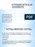 (NEURO) Sistema Reticular 2 3.pptx