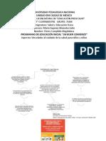 B3 A1 Mapa Aspectos Salud Edu Inicial Infografia Flores Magdalena 19 Marzo 2019
