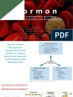 kelompok 2 Sistem Endokrin.pptx