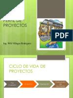 Perfil de Proyecto PDF
