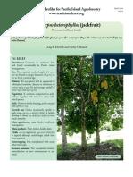 A.heterophyllus-jackfruit.pdf