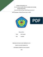 LAPORAN PENDAHULUAN RBD.docx