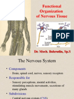 fungsional CNS PENTING!!!.ppt