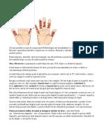 harta degetelor.docx