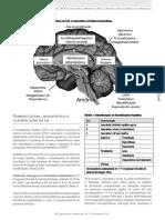 Encefalopatia 1