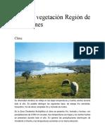 caracteristicas de magallanes y santiago.docx