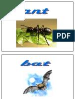 001-Vocabulario Animales en Ingles