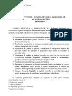 Raport diriginti 2018-2019.docx