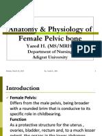 Anat & Phy of Pulvic Bonee