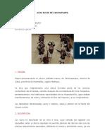ACHA RUCOS DE CANCHAPAMPA.docx