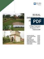 Village immersion report