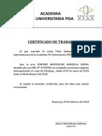 Plan de Trabajo Academia PISA