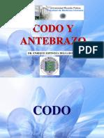 CODO Y ANTEBRAZO-oficial.pptx
