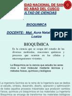 Diapositivas Bioquimica Iq 19