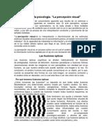 La vista y la psicología-1.docx