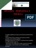 REGIÓN POPLITEA Y PIERNA.pptx