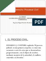 Principios Procesales.ppt