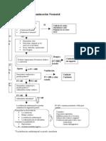 Algoritmo De Reanimación Neonatal