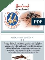 PPT DBD.pptx