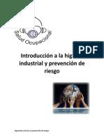 Introducción a La Higiene Industrial y Prevención de Riesgo