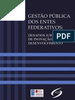 20 - Gestão Política dos Entes Federativos - Desafios Jurídicos de Inovação e Desenvolvimento - Irene Patrícia Nohara.pdf