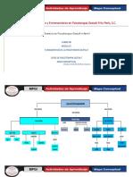 mapa conceptual 1.docx