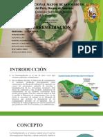 Biorremediacion - Final