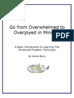 EFT MiniWorkbook