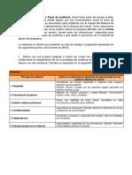 Informe Auditoria.pdf