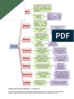 Mapa mental Actividad 1.docx