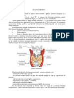 Glandele endocrine -generalitati-.docx