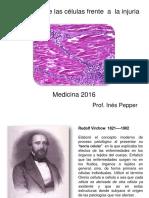 Injuria_celular_Medicina_2016.pdf