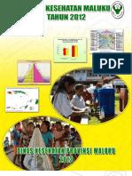 30_Profil_Kes.Prov.Maluku_2012.pdf