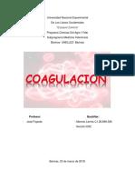PATOLOGICA LENNIS.docx