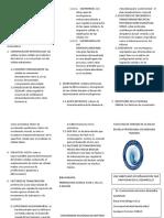 SEÑALES FISIOLOGICAS.docx