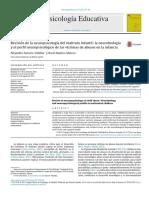1-s2.0-S1135755X17300234-main (1).pdf